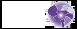 Chiropractic Pooler GA Ranicki Chiropractic Wellness Center