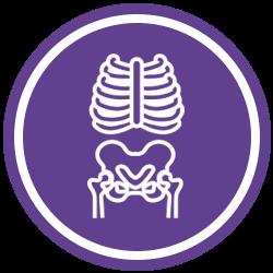 Chiropractic Pooler GA X-Rays
